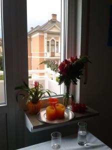 Lene Fenster
